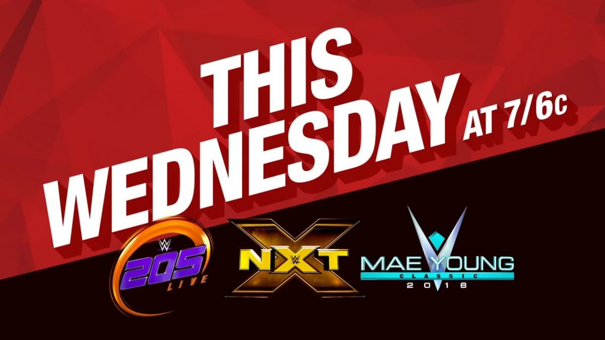 Image result for 205 Live, NXT, Mae Young Classic